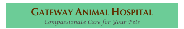 Gateway Animal Hospital Compassionate Care for Your Pets